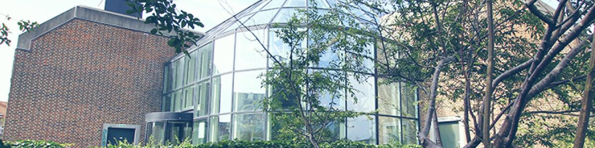 Stemningsbillede fra Glashjørnet på Hovedbiblioteket