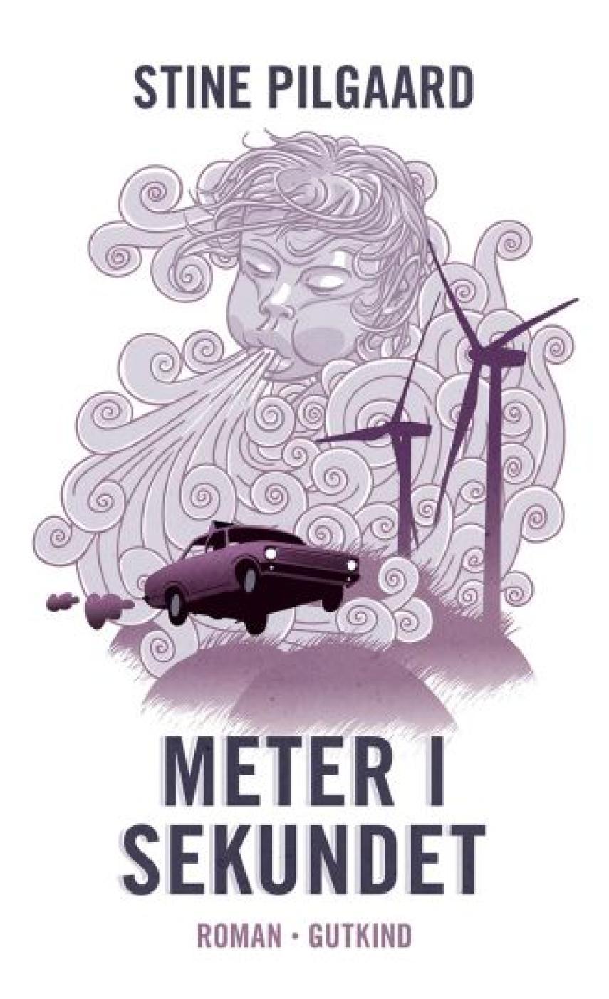 Stine Pilgaard: Meter i sekundet : roman