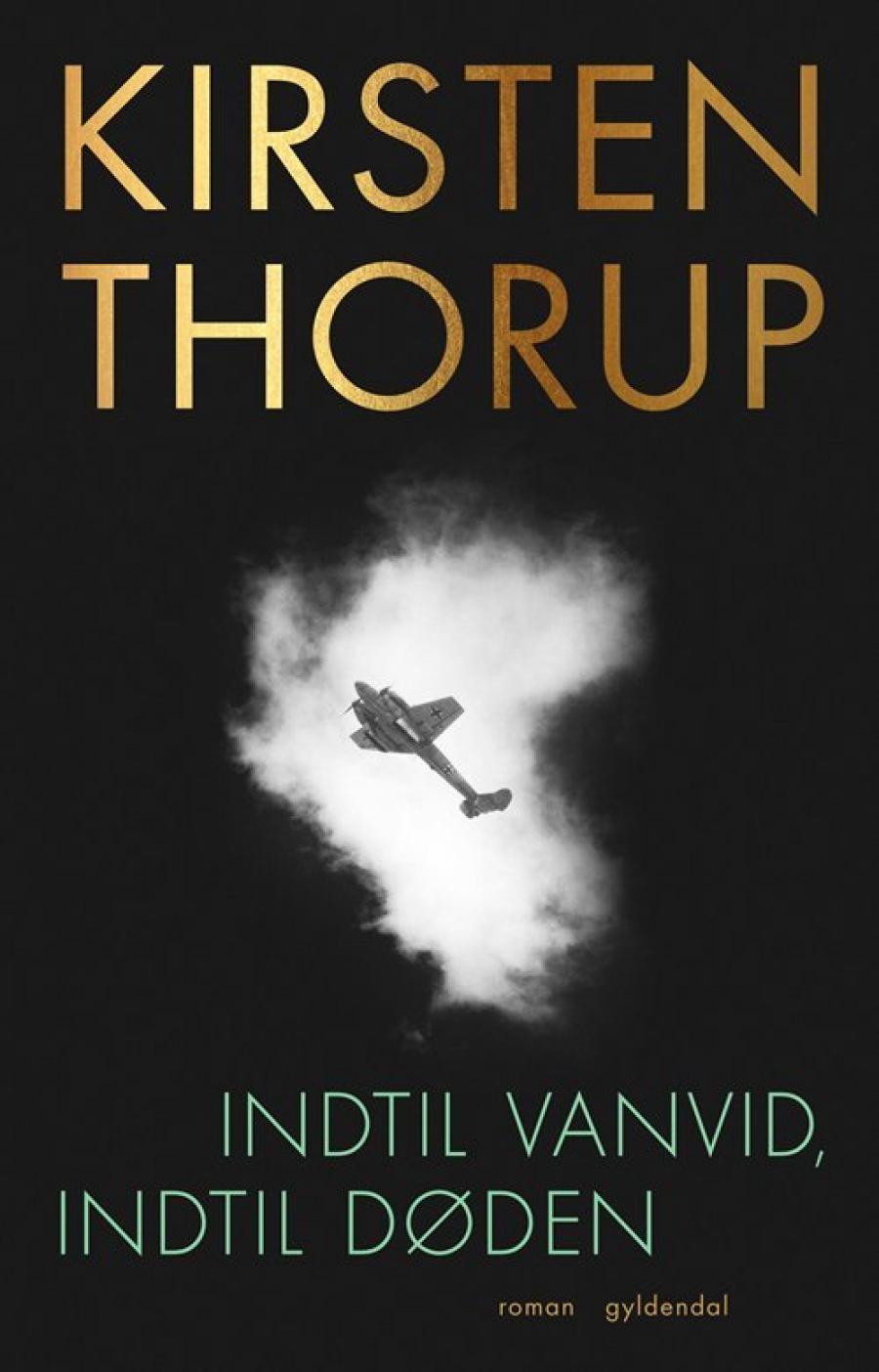 Billede af bogen Indtil vanvid, indtil døden af Kirsten Thorup