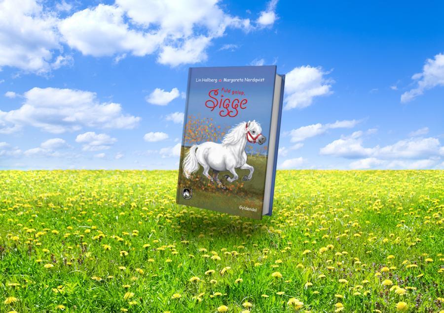 Forside af bogen Sigge